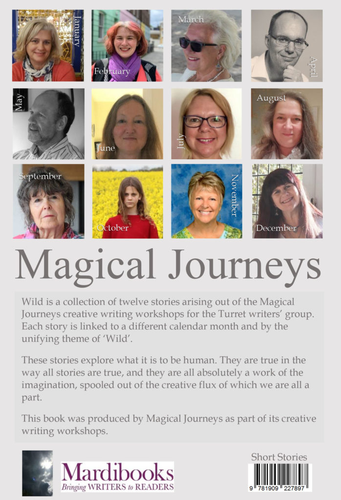 Wild by Magical Journeys back cover